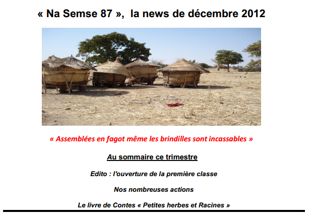 newsnasemse87decembre2012